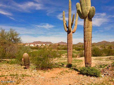Queen Creek Residential Lots & Land For Sale: 28427 N Mildred Road