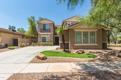 Gilbert Single Family Home For Sale: 4254 S Winter Lane
