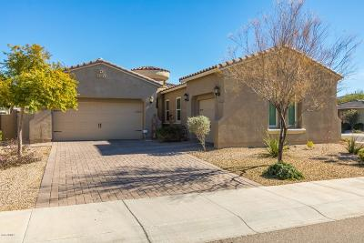 Litchfield Park Single Family Home For Sale: 5105 N 147th Avenue
