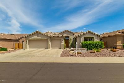 Single Family Home For Sale: 7144 W Bronco Trail