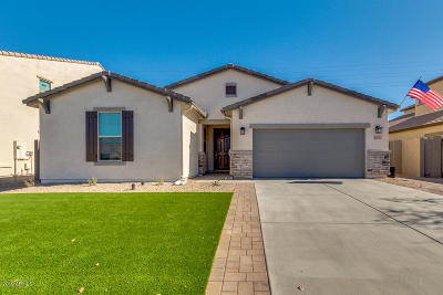San Tan Valley Single Family Home For Sale: 41617 N Calle Del Sol