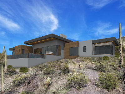 Cave Creek Single Family Home For Sale: 6111 E Carriage Drive