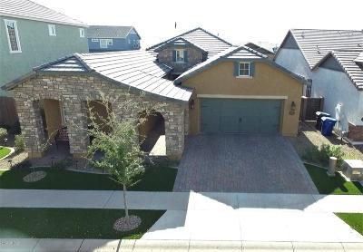 Mesa Single Family Home For Sale: 10721 E Mendoza Avenue