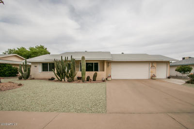 Sun City Single Family Home For Sale: 17409 N Cottonwood Drive