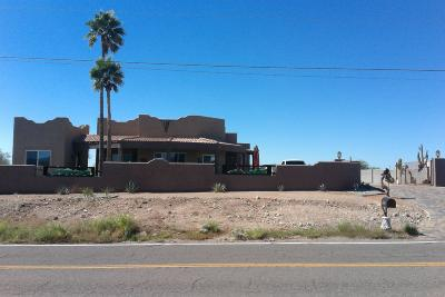 Apache Junction Single Family Home For Sale: 318 S Goldfield Road