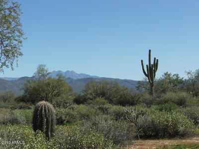 Rio Verde Residential Lots & Land For Sale: 302xx N 170th Street