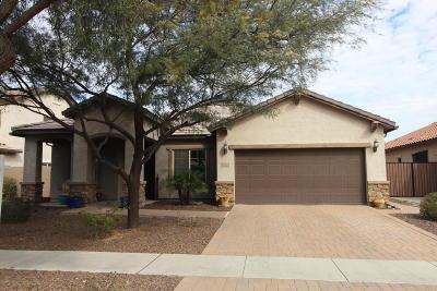 Gilbert Single Family Home For Sale: 3132 E Chisum Lane