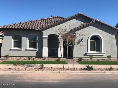Gilbert Single Family Home For Sale: 2888 S Beckett Street
