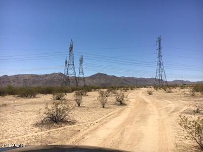 Surprise Residential Lots & Land For Sale: N 220th (Apn 503-80-048a) Avenue