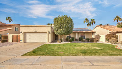 Scottsdale Single Family Home For Sale: 5502 E Sandra Terrace
