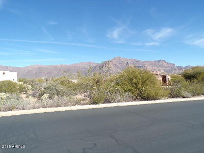 Gold Canyon Residential Lots & Land For Sale: 4553 S Strike It Rich Drive