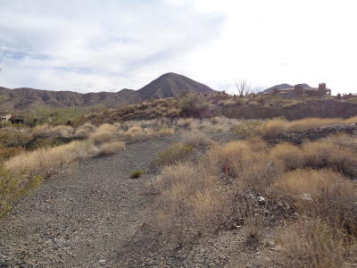 Fountain Hills Residential Lots & Land For Sale: 14223 E Coyote Way