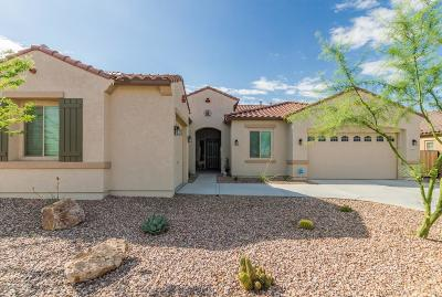 Queen Creek Single Family Home For Sale: 18877 E Old Beau Trail
