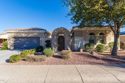 Sun City West Single Family Home For Sale: 12844 W El Sueno Drive