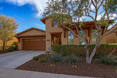 Peoria Single Family Home For Sale: 13663 W Creosote Drive