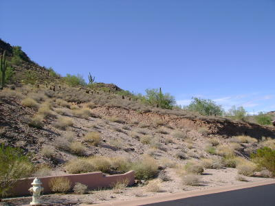 Fountain Hills AZ Residential Lots & Land For Sale: $199,000