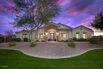 Chandler, Fountain Hills, Gilbert, Mesa, Paradise Valley, Queen Creek, Scottsdale, Gold Canyon, San Tan Valley Single Family Home For Sale: 4351 W Earhart Way