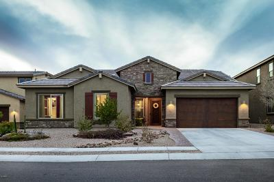Oro Valley Single Family Home For Sale: 10967 N Delphinus Street