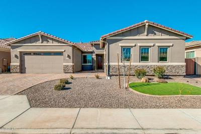 Chandler Single Family Home For Sale: 3200 S Pinnacle Drive