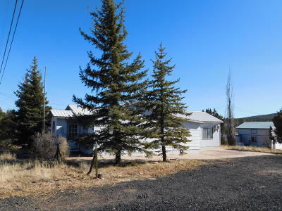 Show Low Single Family Home For Sale: 983 Bunch Circle