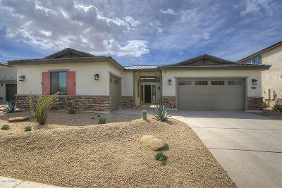 Chandler Single Family Home For Sale: 3821 E Horseshoe Place