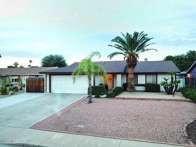 Scottsdale Single Family Home For Sale: 6808 E Paradise Lane