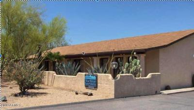 Cave Creek Multi Family Home For Sale: 37251 Ootam Road