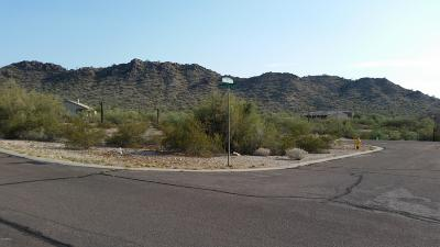 Goodyear Residential Lots & Land For Sale: 9400 S Krista Drive S