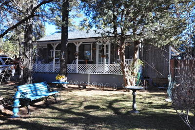 Overgaard Single Family Home For Sale: 2893 Holiday Forest Drive