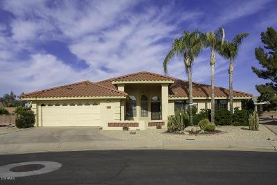Mesa Single Family Home For Sale: 2616 S Dandelion