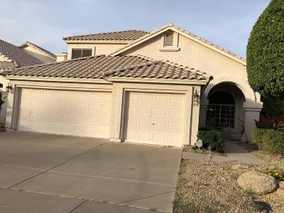 Tempe  Single Family Home For Sale: 192 W Los Arboles Drive