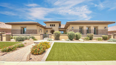 Gilbert Single Family Home For Sale: 2102 E Mead Drive