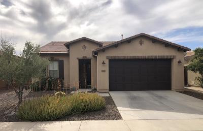 San Tan Valley Single Family Home For Sale: 1793 E Adelante Way