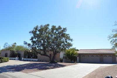 Scottsdale Single Family Home For Sale: 8347 E Via De La Gente