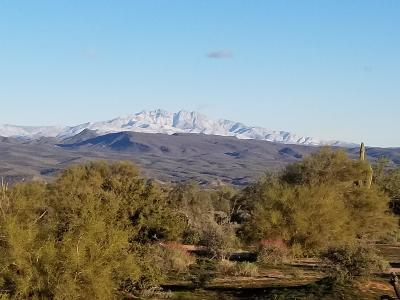 Scottsdale Residential Lots & Land For Sale: 28xxx N 165th Place
