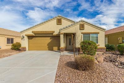 Chandler Single Family Home For Sale: 697 S Valencia Place