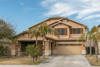 Goodyear Single Family Home For Sale: 16160 W Durango Street