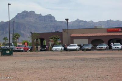 Apache Junction Residential Lots & Land For Sale: 271 S Phelps Drive