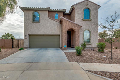 Laveen Single Family Home For Sale: 4805 W Donner Drive