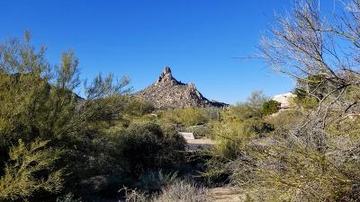 Scottsdale Residential Lots & Land For Sale: 10040 E Happy Valley Road