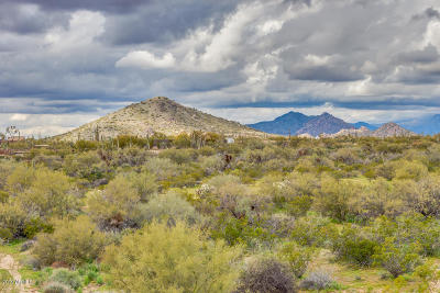 Scottsdale Residential Lots & Land For Sale: 86x1 E Via Dona Road