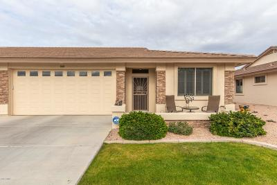 Chandler, Gilbert, Mesa, Queen Creek, San Tan Valley, Sun Lakes, Gold Canyon, Maricopa Condo/Townhouse For Sale: 2663 S Springwood Boulevard #324