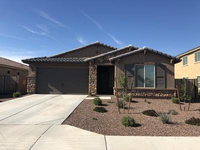 Goodyear Single Family Home For Sale: 4216 S 186th Avenue