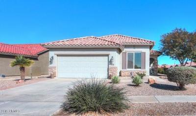Casa Grande Single Family Home For Sale: 2678 E Santa Maria Drive