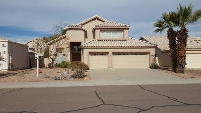 Tempe Single Family Home For Sale: 380 W Palomino Drive