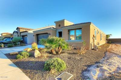Pinal County Single Family Home For Sale: 57 E Camellia Way