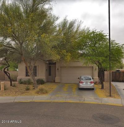 Queen Creek Single Family Home For Sale: 32626 N Cat Hills Avenue