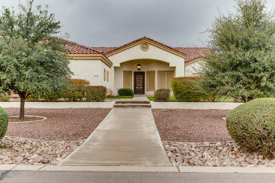 Queen Creek Single Family Home For Sale: 25158 S 194th Street