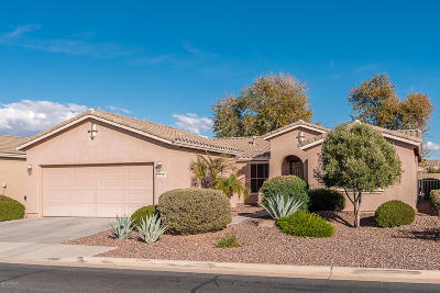 Maricopa Single Family Home For Sale: 20303 N Enchantment Pass