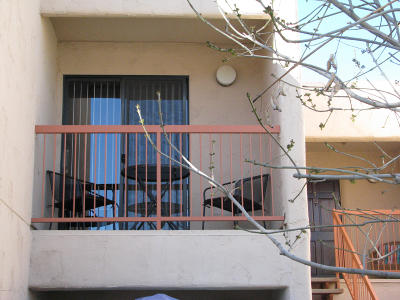 Apartment For Sale: 9270 E Mission Lane #218